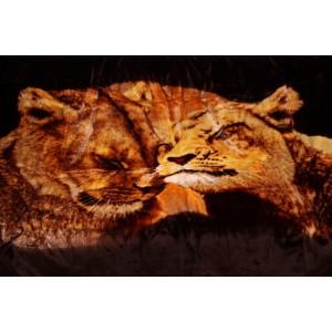 Hnědá deka s motivem lvic