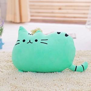Polštář kočka Pusheen