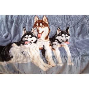 Šedá deka s motivem husky