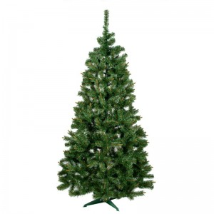 Vánoční stromek jedle s hustým jehličím