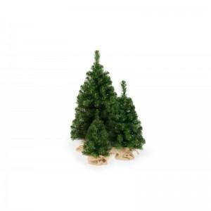 Malý stromek s plastovým stojanem