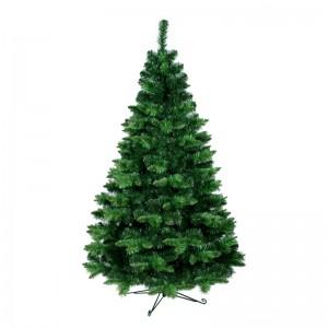 Krásný velmi hustý vánoční stromek borovice
