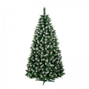 Vánoční stromek velmi hustá borovice kuželovitého tvaru