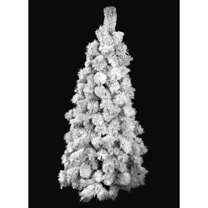 Vánoční stromek zasněžená borovice s dlouhým jehličím