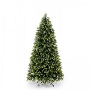 Vánoční stromek borovice se světlejšími větvičkami na koncích