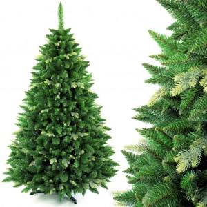 Krásná vánoční borovice s dvojími větvičkami