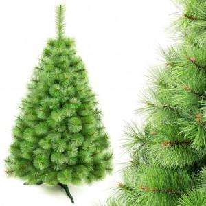 Světle zelený vánoční stromeček borovice