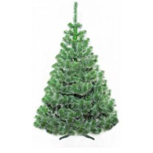 Vánoční jedlička s bílými konci větviček