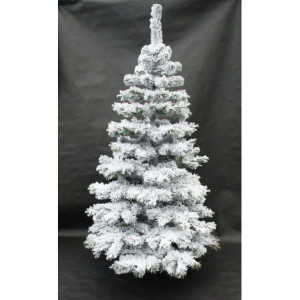 Zasněžená jedle vánoční stromek