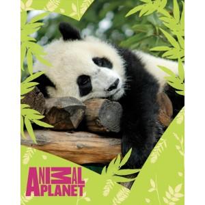 Příjemná teplá deka Disney pro vaše dítě s motivem Animal Planet
